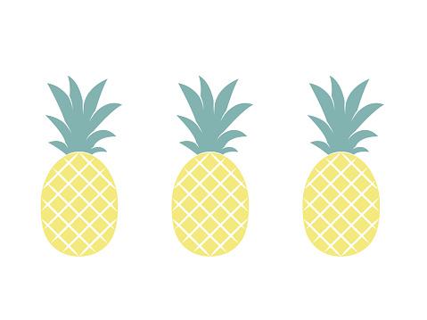 Pineapple fruit. Vector illustration.