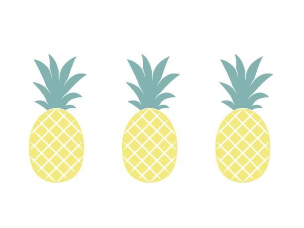 Pineapple fruit. Vector illustration. – artystyczna grafika wektorowa