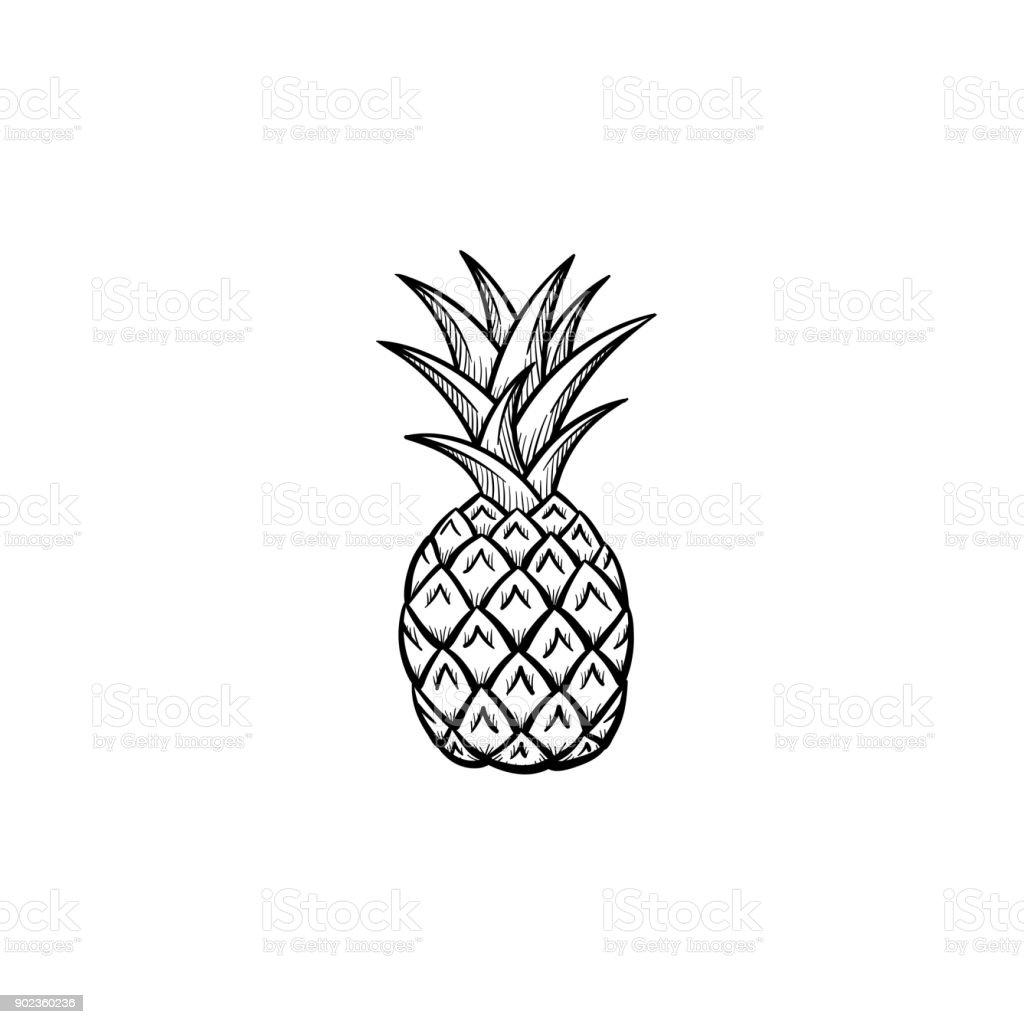 Pineapple hand drawn sketch icon vector art illustration