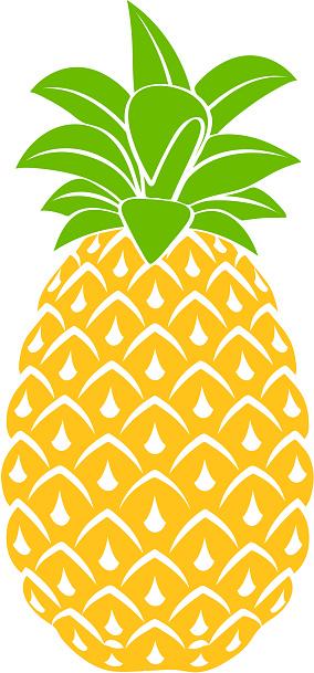 Pineapple Icon Symbol Design Vector Illustration Stock ...
