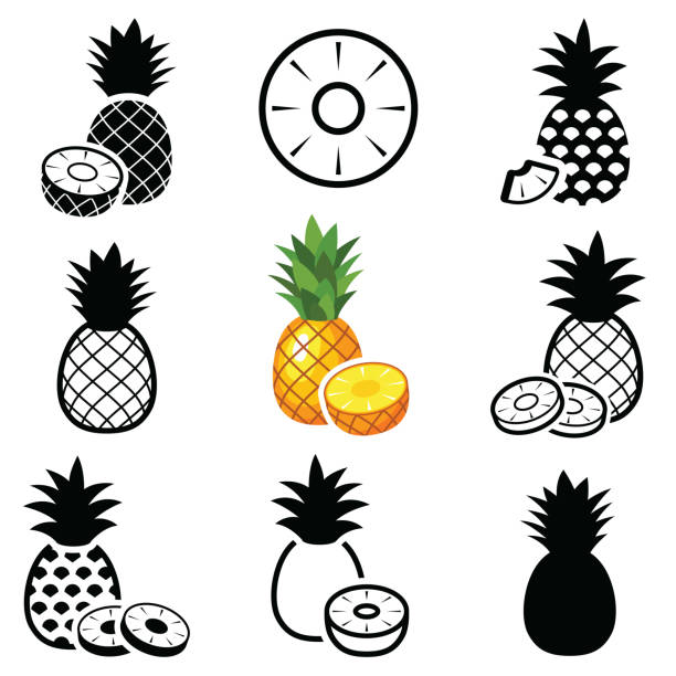 illustrazioni stock, clip art, cartoni animati e icone di tendenza di pineapple icons - ananas