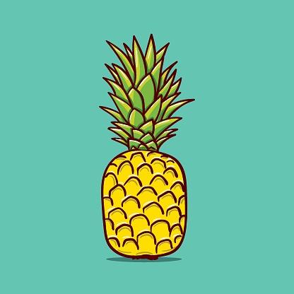 Pineapple outline illustration. Vector doodle sketch hand drawn illustration