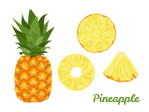 Pineapple set. Whole pineapple and slices isolated on a white background. Vector illustration of tropical fruit in cartoon flat style.