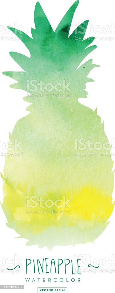 Pineapple silhouette with watercolor abstract texture vector art illustration