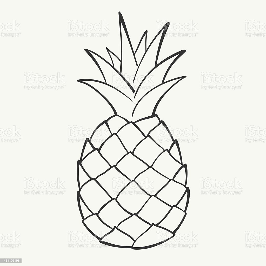 Pineapple Sketch Stock Vector Art & More Images of 2015