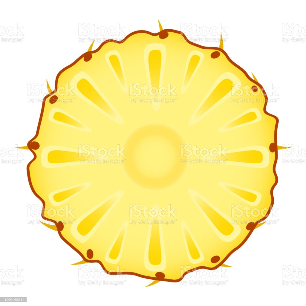 Pineapple Slice On White Stock Illustration - Download ...