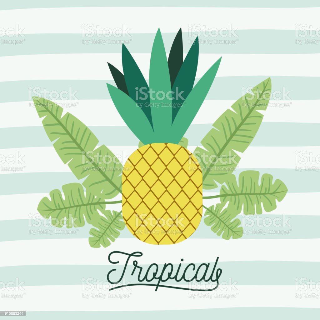 Tropische Frucht Einer Ananas Mit Blättern Auf Dekorative Linien ...