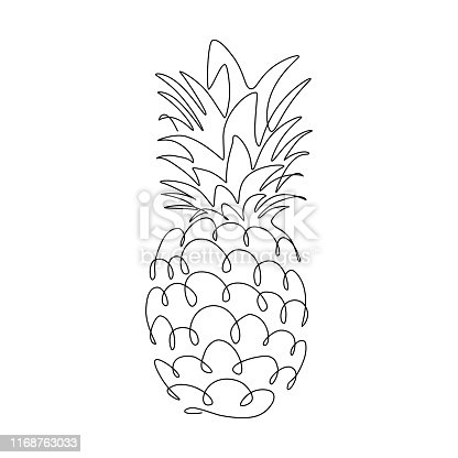 Pineapple tropical fruit in continuous line art drawing style. Black line sketch on white background. Vector illustration