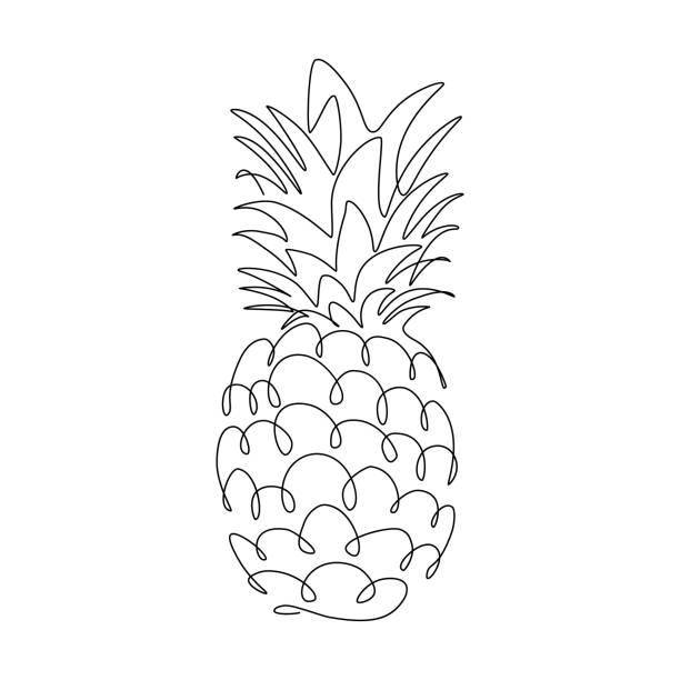 illustrazioni stock, clip art, cartoni animati e icone di tendenza di pineapple - ananas