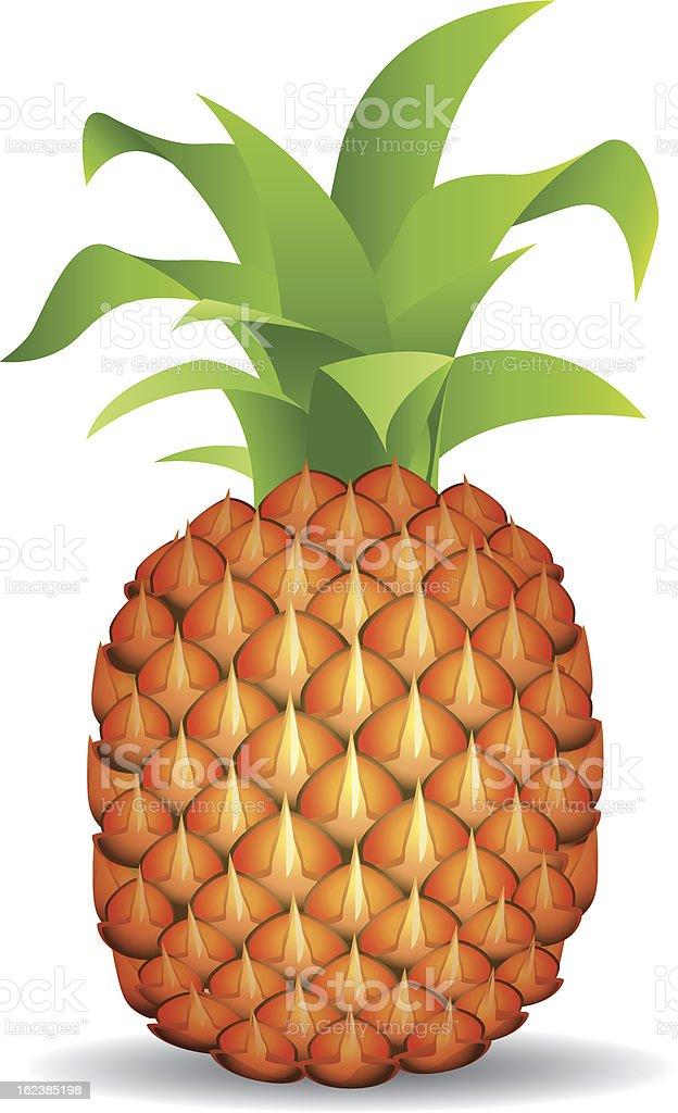 Pineapple royalty-free stock vector art