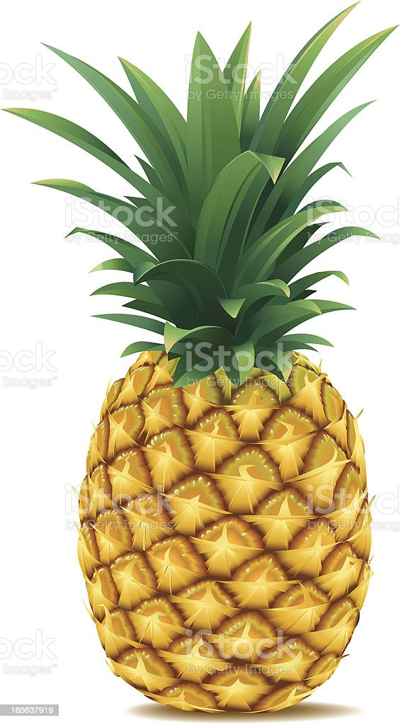 Pineapple Stock Vector Art & More Images of Cut Out ...