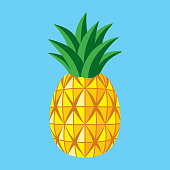 Vector illustration of a pineapple.