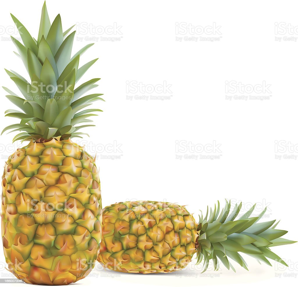 Pineapple - Vector illustration royalty-free pineapple vector illustration stock vector art & more images of cut out