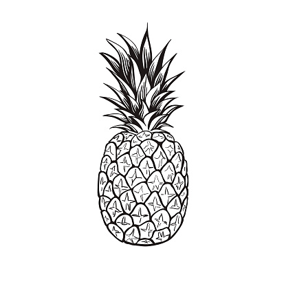 Pineapple - Vector