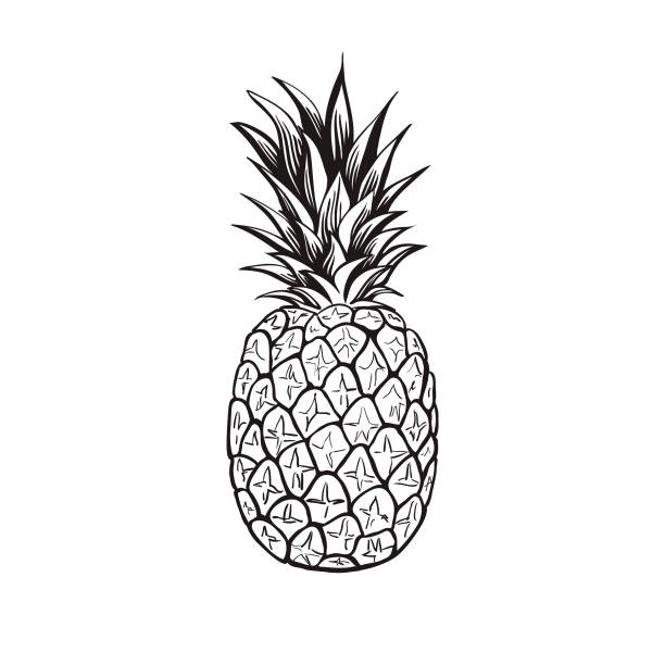 Pineapple Illustrations, Royalty-Free Vector Graphics ...