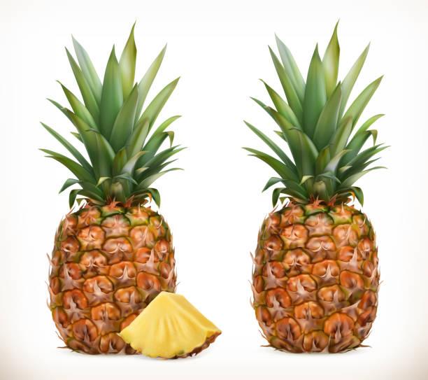illustrazioni stock, clip art, cartoni animati e icone di tendenza di pineapple. whole and pieces. sweet fruit. 3d vector icons set. realistic illustration - ananas