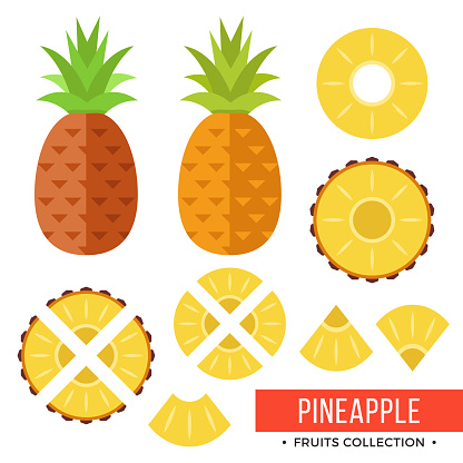 Pineapple. Whole pineapple, ananas and parts, leaves, slices, core. Set of fruits. Flat design graphic elements. Vector illustration