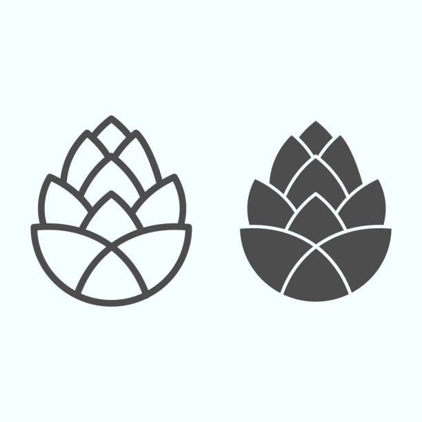 Pinecone brewery plant line and solid icon. One single flower of pine cone. Autumn season vector design concept, outline style pictogram on white background, use for web and app. Eps 10. Pinecone brewery plant line and solid icon. One single flower of pine cone. Autumn season vector design concept, outline style pictogram on white background, use for web and app. Eps 10 holiday and seasonal icons stock illustrations