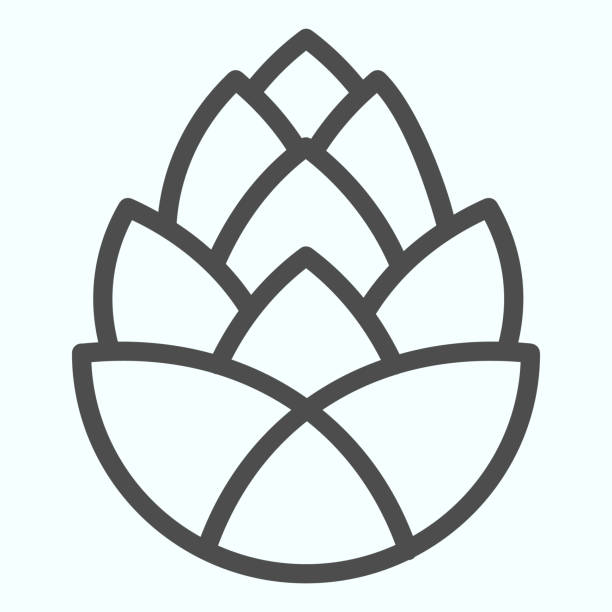 pinecone brauerei anlage linie symbol. eine einzige blume aus tannenzapfen. herbst-saison-vektor-design-konzept, umriss stil piktogramm auf weißem hintergrund, verwendung für web und app. eps 10. - menschliches körperteil stock-grafiken, -clipart, -cartoons und -symbole