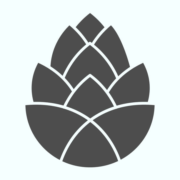 Pinecone brewery plant solid icon. One single flower of pine cone. Autumn season vector design concept, glyph style pictogram on white background, use for web and app. Eps 10. Pinecone brewery plant solid icon. One single flower of pine cone. Autumn season vector design concept, glyph style pictogram on white background, use for web and app. Eps 10 human body part stock illustrations