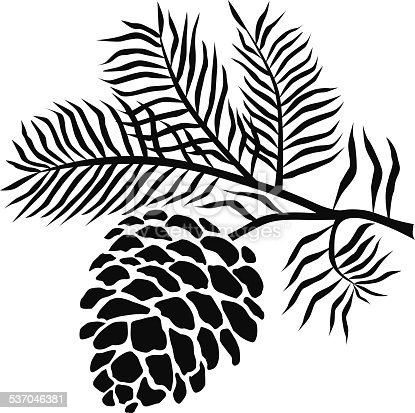 Pinecone on branch in black and white stock vector art 537046381 istock - Pomme de pin dessin ...