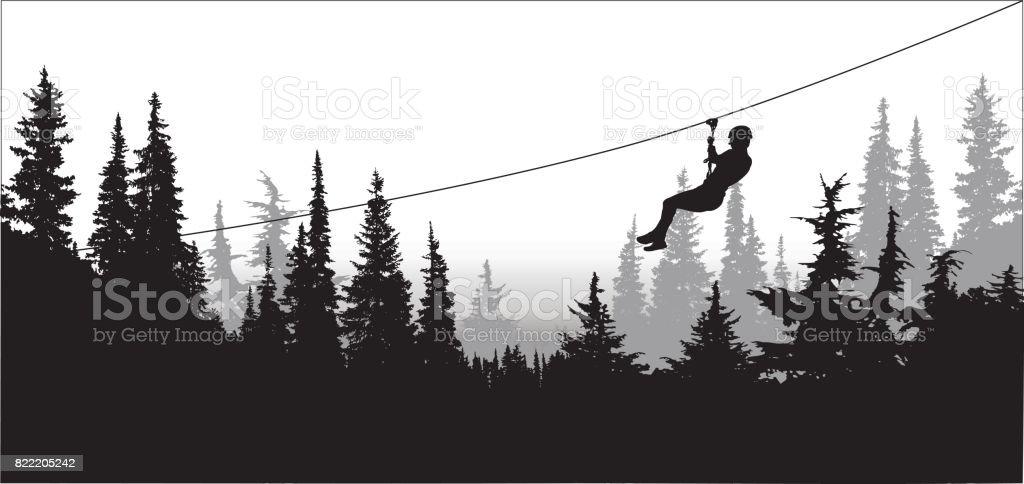 Pines-manningPark vector art illustration