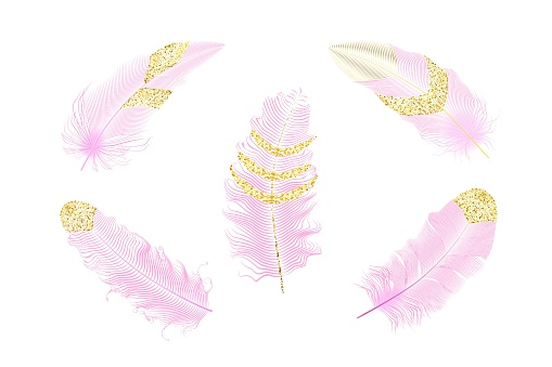 Pink and gold glitter feathers.Boho style elements,tattoo template.Hippie   gold design elements on a white background.Vector illustration.
