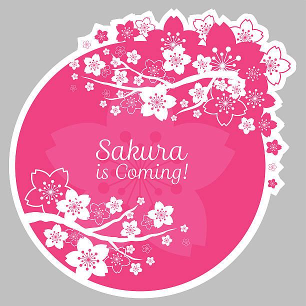ilustrações de stock, clip art, desenhos animados e ícones de flores de cereja e sakura flores posição e rótulo - cherry blossoms