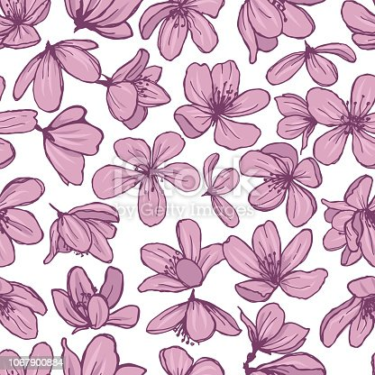 istock Pink blossom flowers on white background. 1067900884