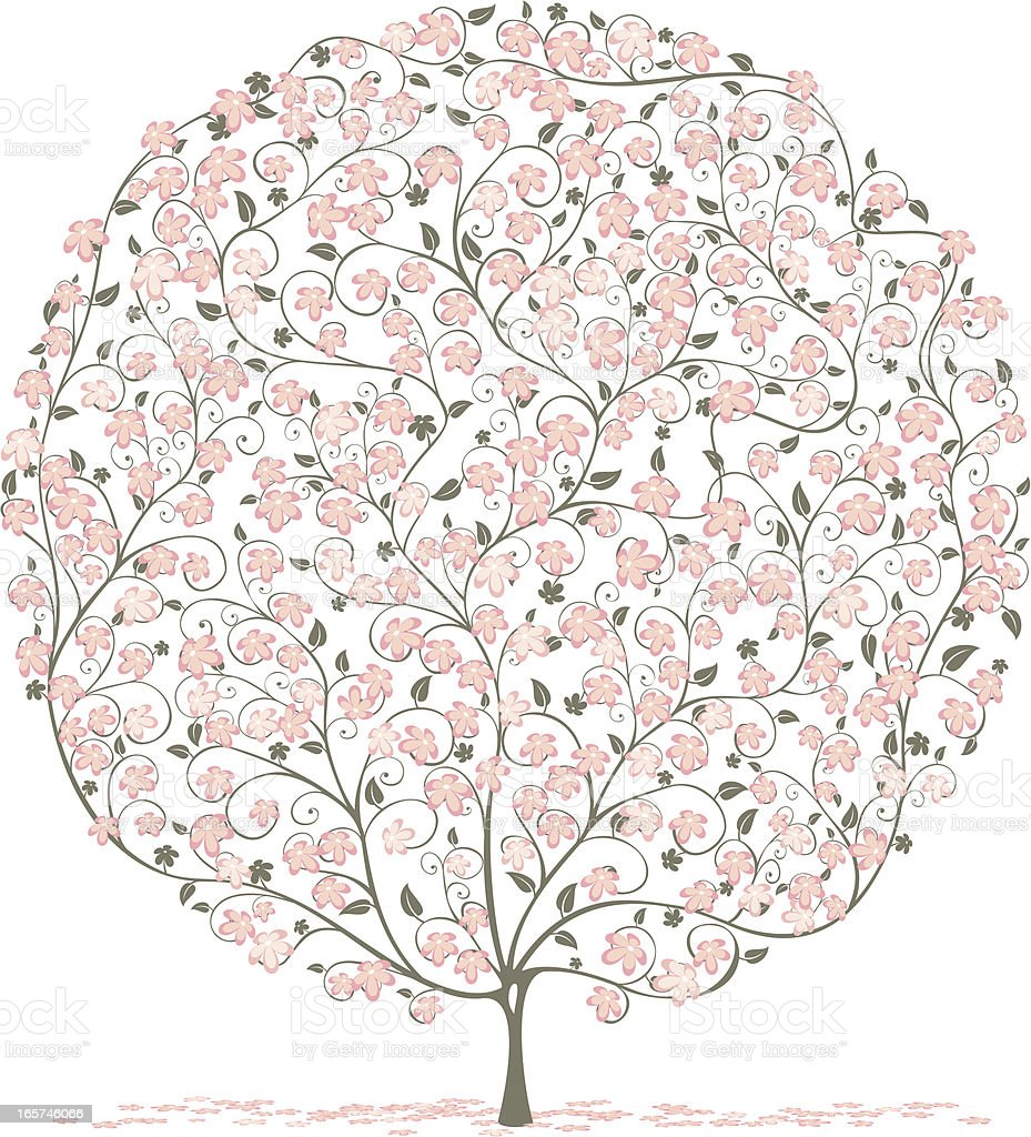Pink Blossom royalty-free pink blossom stock vector art & more images of beauty in nature