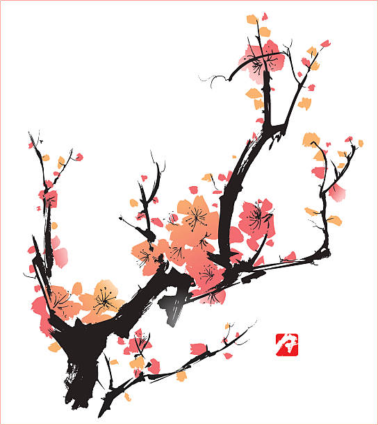 Pink blossoms on black branches over a white backdrop Plum Blossom symbolise love and happiness, vectorized painting plum blossom stock illustrations