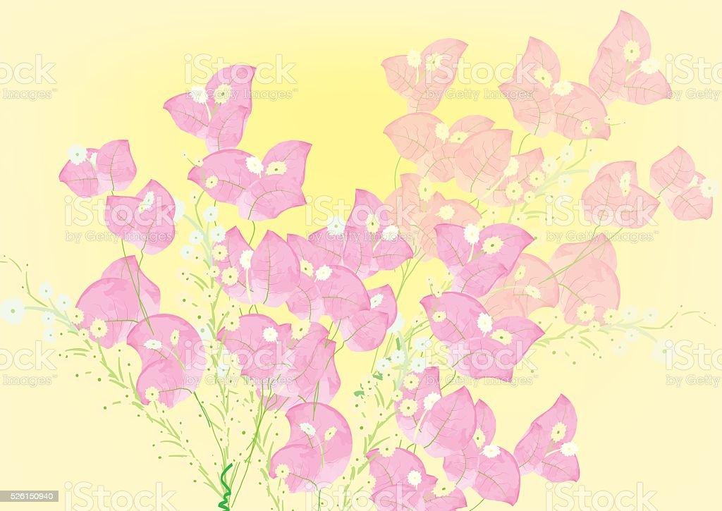 pink bougainvillea flowers  for object or background vektör sanat illüstrasyonu