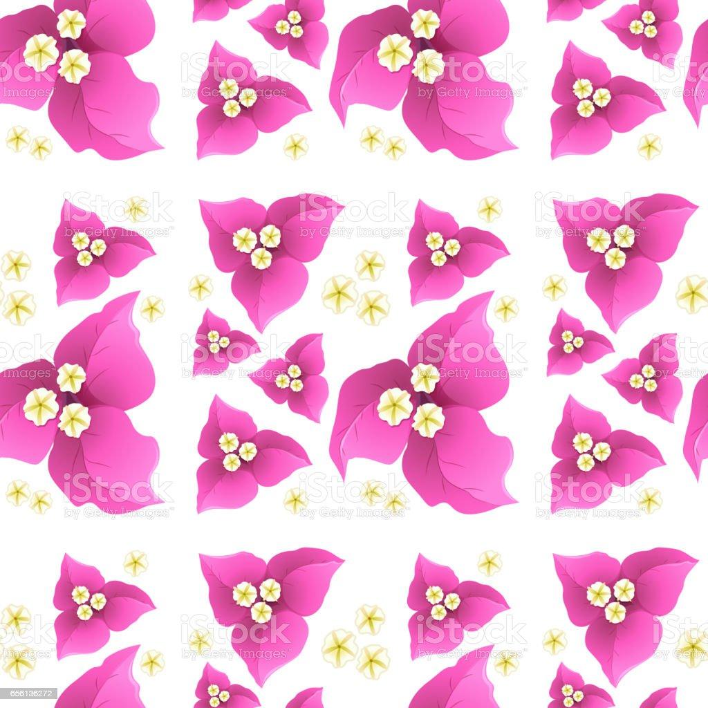 Pembe Begonviller çiçek sorunsuz arka plan üzerinde vektör sanat illüstrasyonu
