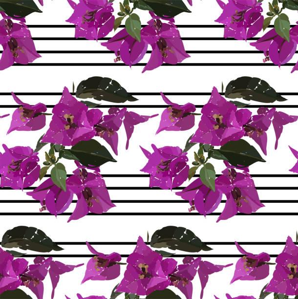 Patrón sin fisuras de buganvillas de color rosa. Dibujado a mano ilustración botánica. Diseño floral vector de moda estampados, scrapbook, papel de embalaje. - ilustración de arte vectorial