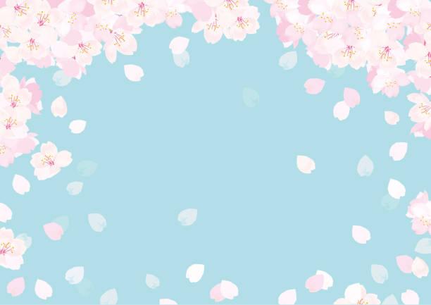 ピンク桜ベクターイラスト - 桜点のイラスト素材/クリップアート素材/マンガ素材/アイコン素材