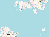 istock Pink Cherry blossom,Vector Illustration 1196597157