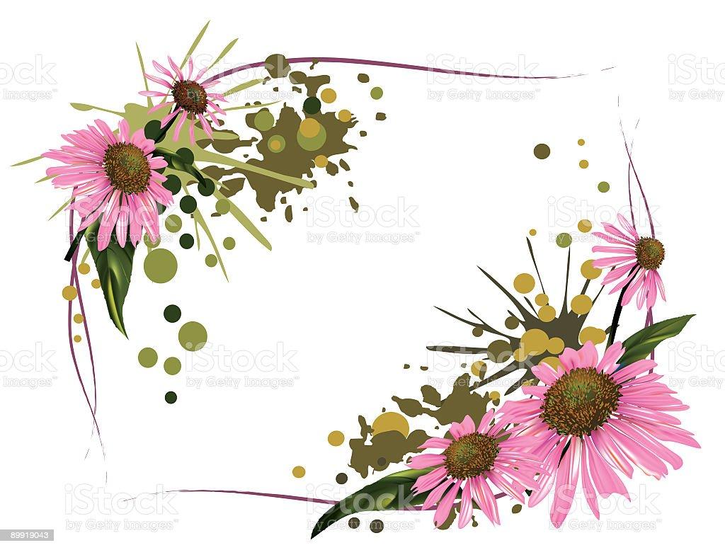 Pink Daisy Frame vector art illustration
