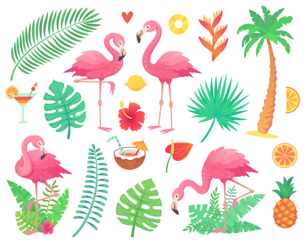 pink flamingo and tropical plants. beach palm, african plant leafs, rainforest flower, tropic palms leaf and rosy flamingos vector set - exotic animals stock illustrations