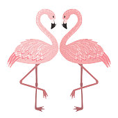 Hand drawn cute pink flamingo couple in love isolated on white background. Tropical bird. Vector illustration.