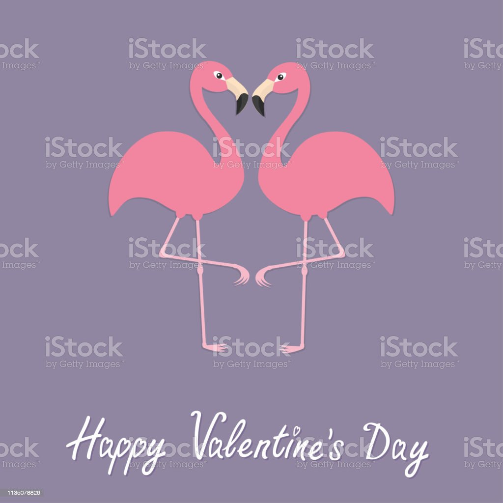 Flamingo couple neck heart shape. Exotic tropical bird. Zoo animal...