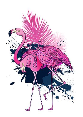 Pink flamingo couple.