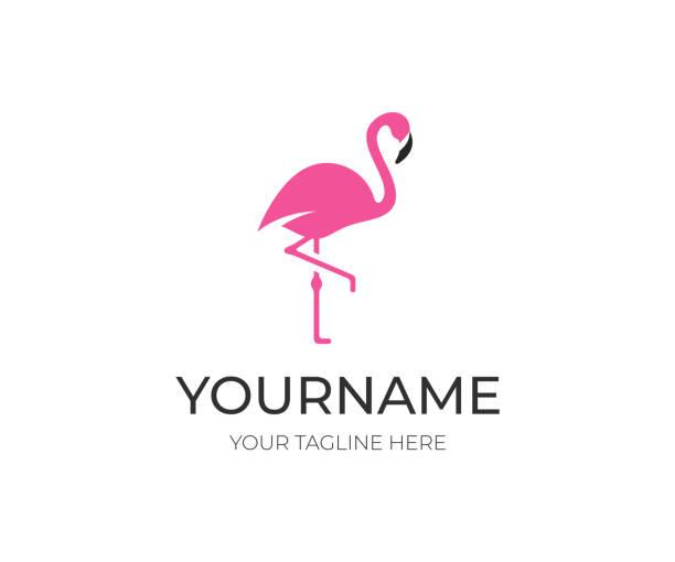 pink flamingo, design. bird vector design. animal world illustration - flamingo stock illustrations