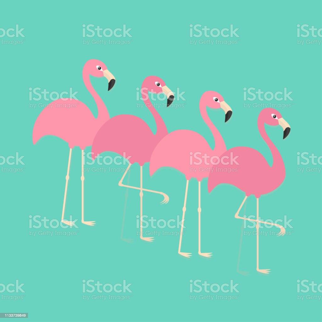 Pink flamingo set. Exotic tropical bird. Zoo animal collection. Cute...