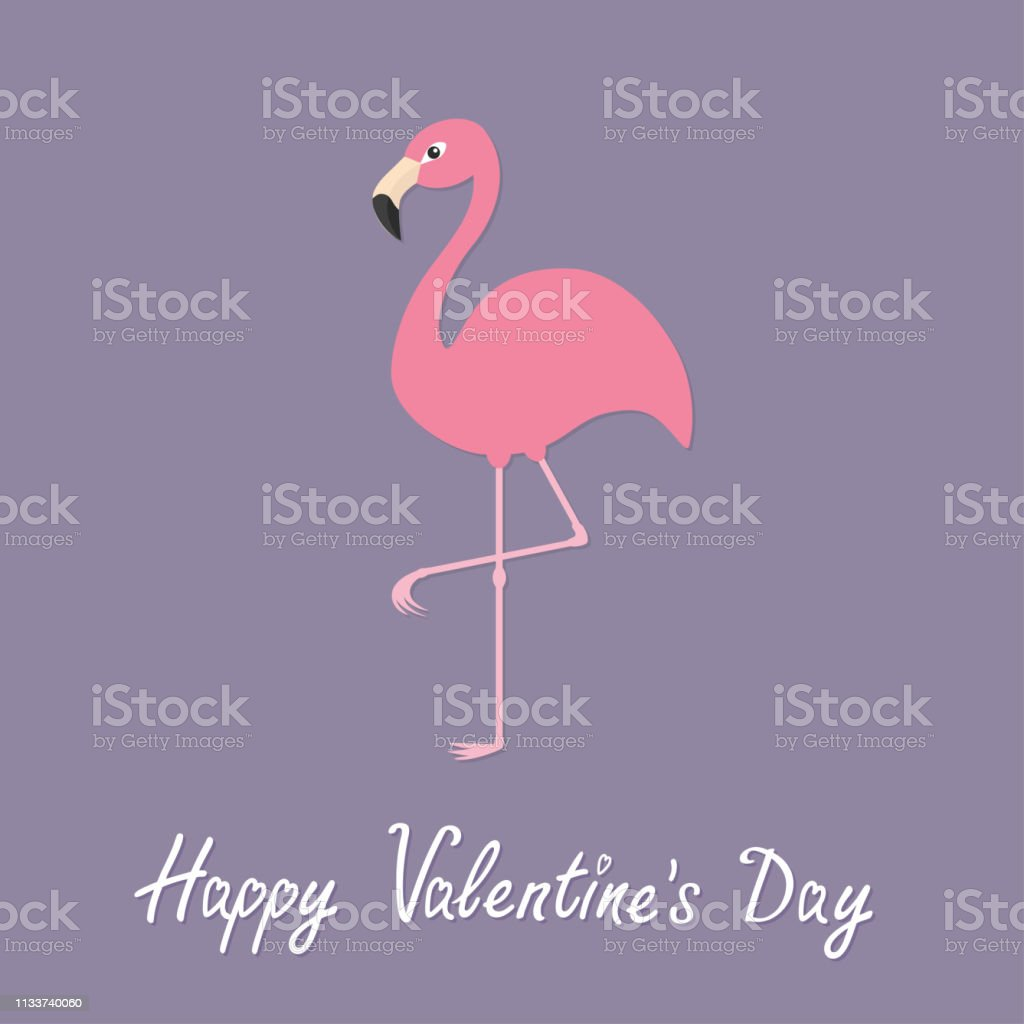 Pink flamingo standing on one leg. Exotic tropical bird. Zoo animal...