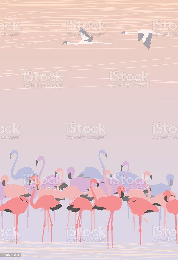 Pink Flamingos vector art illustration