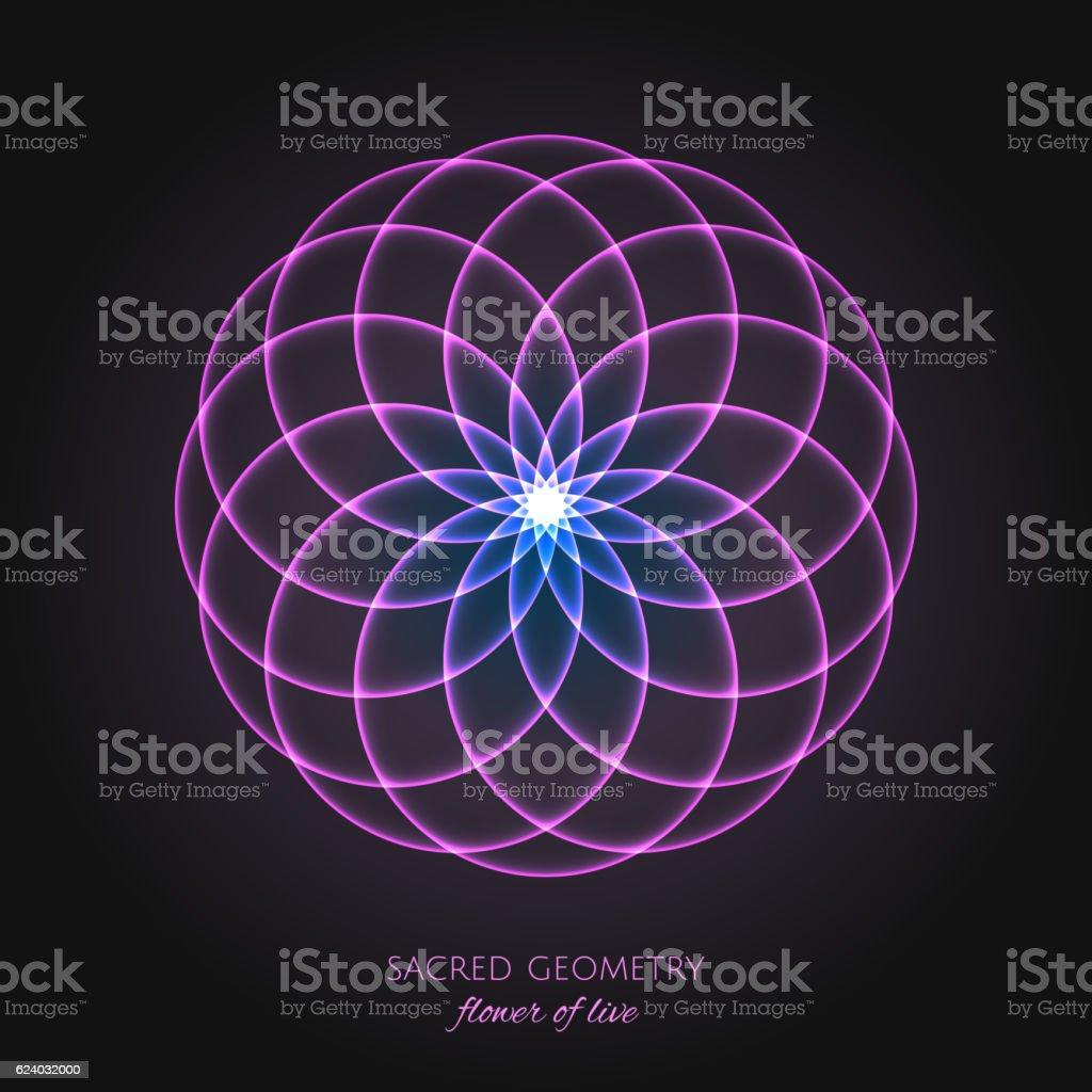 Pink flower of Life. Sacred Geometry. vector art illustration