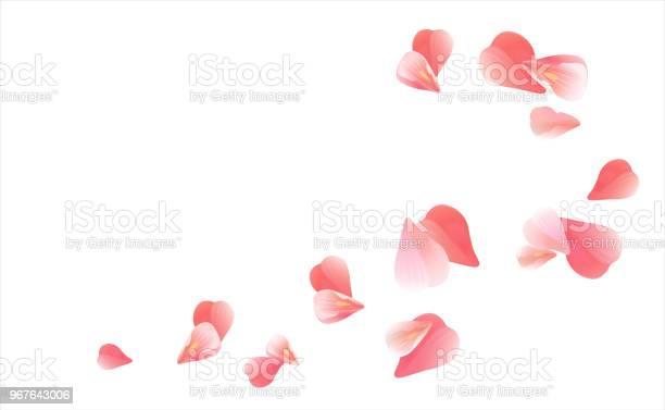 Pink flying petals isolated on white background petals in the form of vector id967643006?b=1&k=6&m=967643006&s=612x612&h=ikjycmgpti1 thep3xggai3eg92vzohun78tat xqjm=