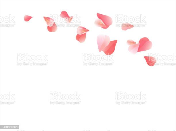 Pink flying petals isolated on white background petals in the form of vector id968862920?b=1&k=6&m=968862920&s=612x612&h=bpmlsj26klobly3lpc25apvwazonk79m67nrwm7xip0=