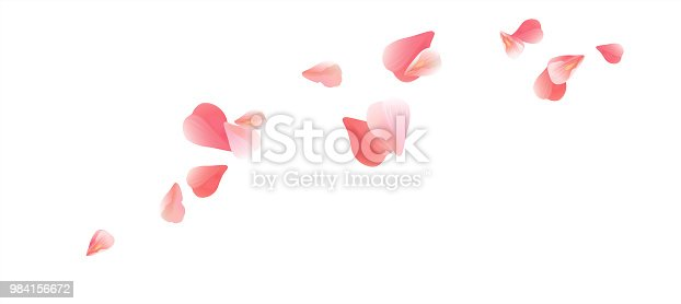Pink flying petals isolated on White background. Petals in the form of heart. Horizontal. Vector EPS 10 cmyk