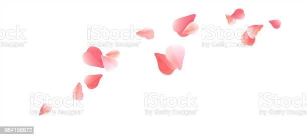 Pink flying petals isolated on white background petals in the form of vector id984156672?b=1&k=6&m=984156672&s=612x612&h=c0xvxigigsixuofiehshlnj5 5ezfzyz7hmlwlg1yog=